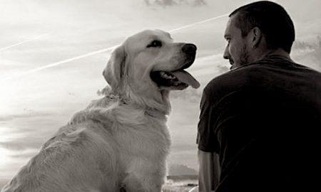 Una Capitale A Quattro Zampe - un uomo e un cane