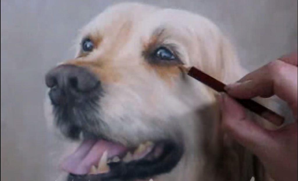 Una capitale a quattro zampe - Dipinto Di Un Cane