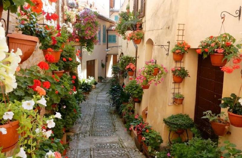 Non solo fiori sui balconi ma anche nei vicoli di Palazzolo