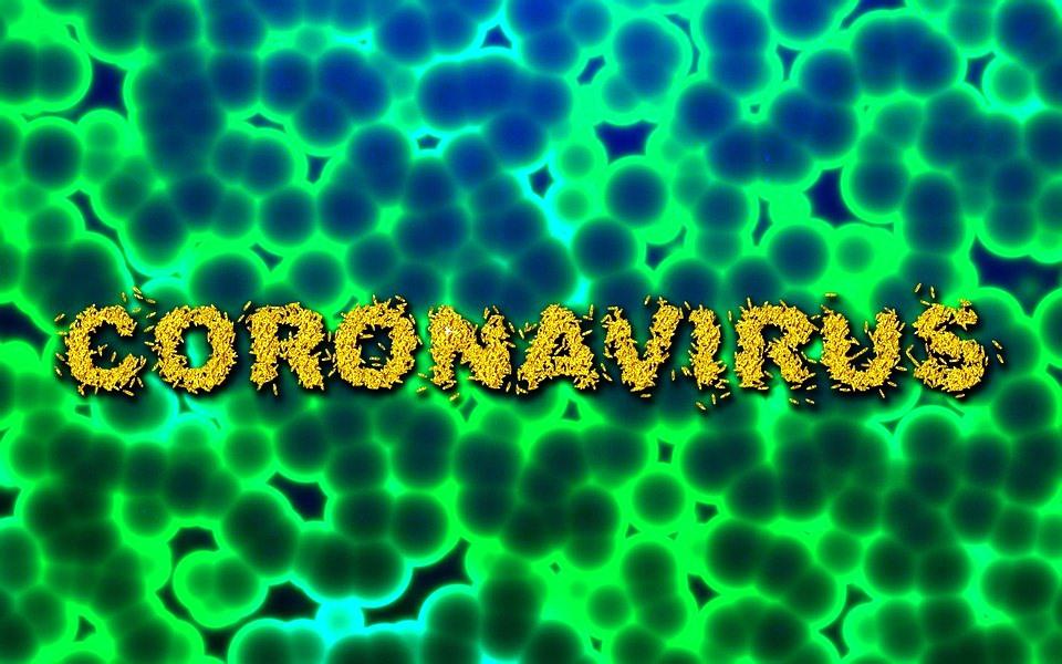 Il Coronavirus ha determinato lo stop al Festival