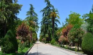 Antonino Pantano: Villa comunLE