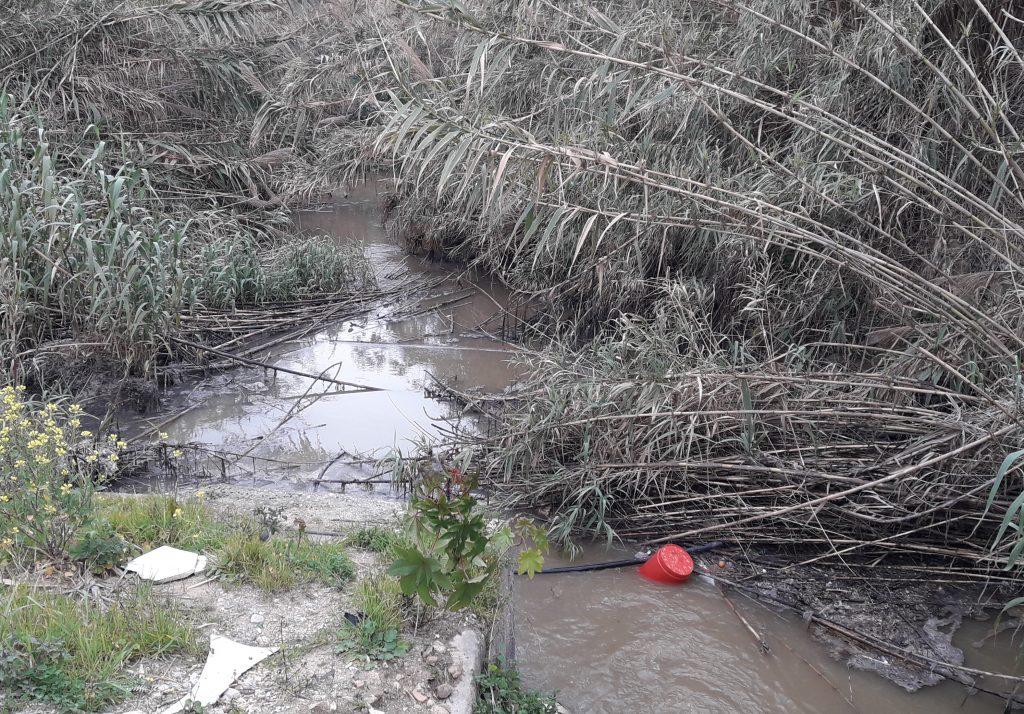 Secchio Rosso Foce fiume Oreto
