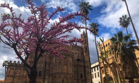 piazza sett'angeli: la vista dell'abside della cattedrale