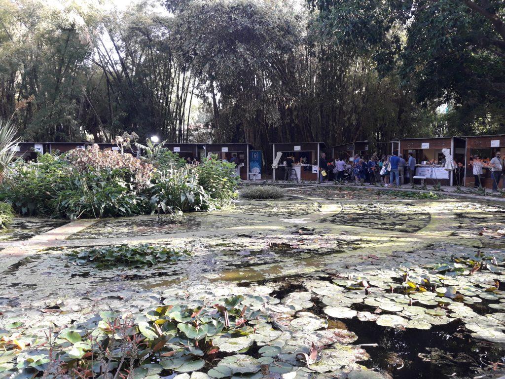Fontana Orto Botanico