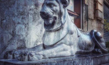 Grigio di Billiemi: i leoni di piazza Pretoria