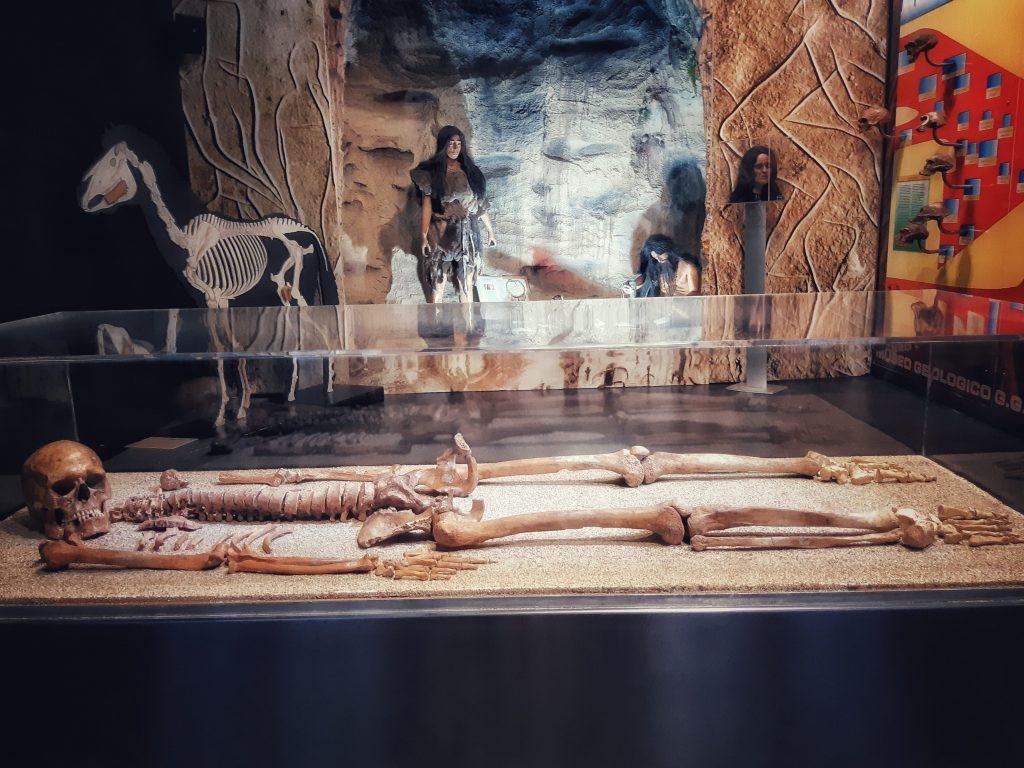 Sala dell'Uomo dedicata a Thea