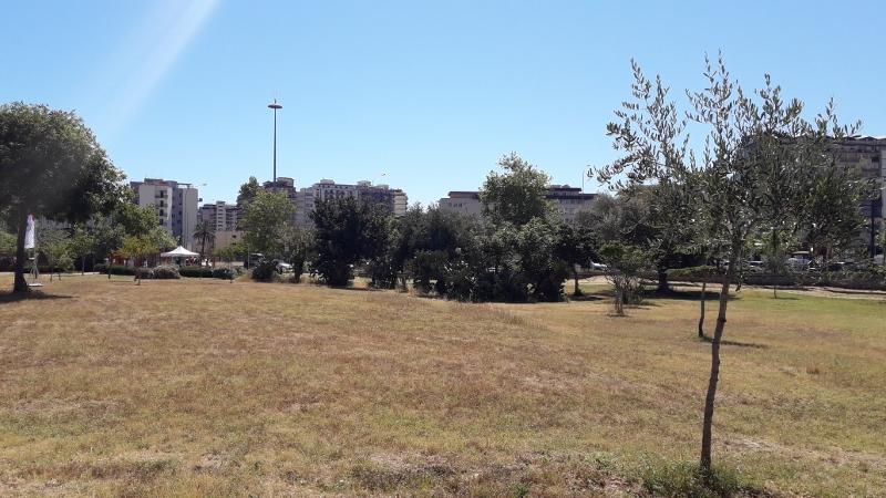 Vista di una parte del parco