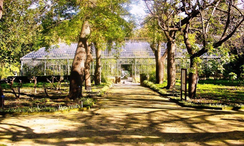 Orto Botanico Palermo 01