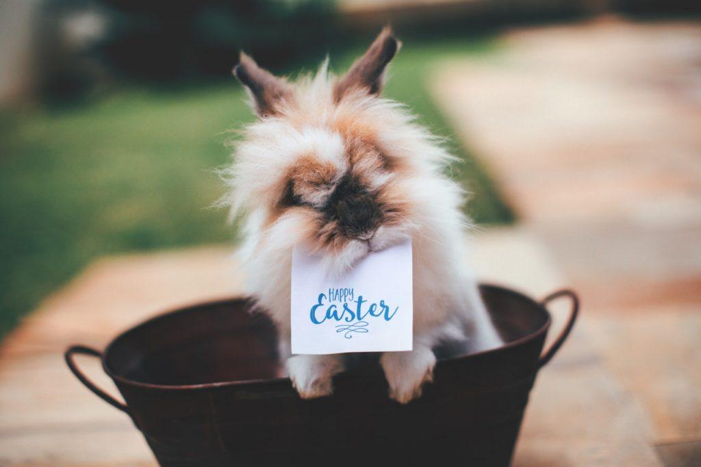Pasqua a Parigi tra cioccolata, amici e bonheur