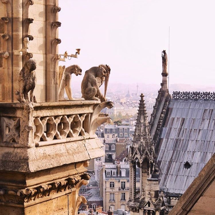 Notre Dame - le statue del tetto