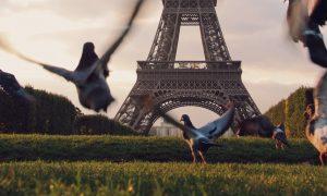 Fase 2 Parigi Tour