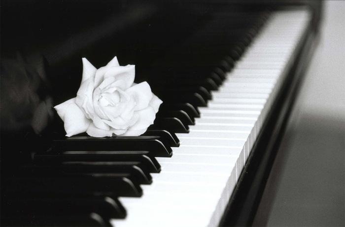 Pianoforte Vincenzo Gulli