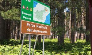 Parco dell'Aspromonte - l'ingresso
