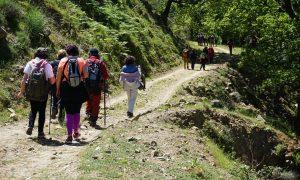 Un'escursione In Aspromonte