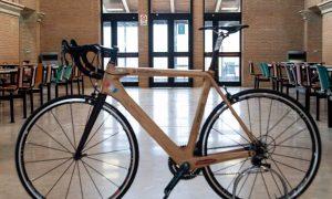 La Bicicletta Nell'atrio Del Dipartimento Di Agraria