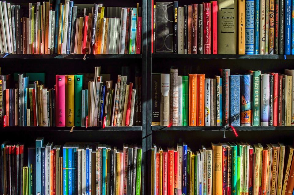 Biblioteca Scaffali