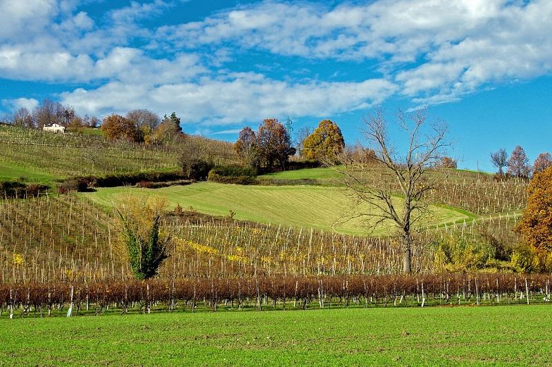 verdi - Parma