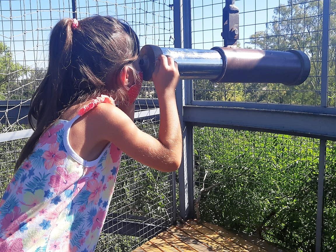 Aprender Jugando - El Jardin de los Niños