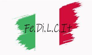 Fedilcit - Portada