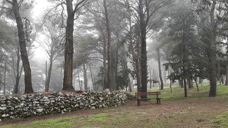 Sicilian Ghost Story - Bosco Della Baronia Sicilia