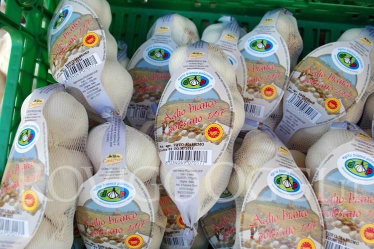 aglio bianco polesano in una cesta pronto per essere venduto