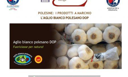 aglio bianco polesano ed il consorzio a sua tutela
