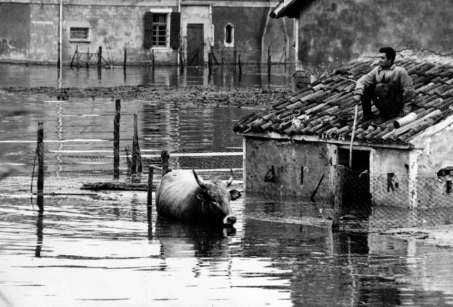Alluvione Polesine