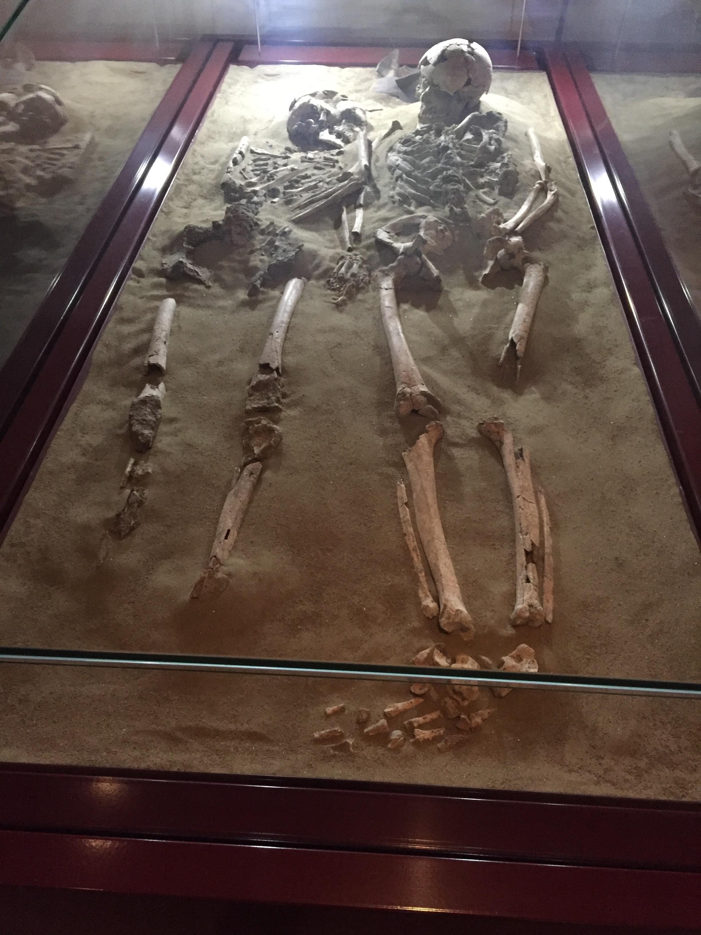 Museo dei Grandi Fiumi Rovigo gli amanti