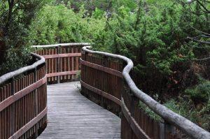 Il Giardino Botanico Porto Caleriwikiloc
