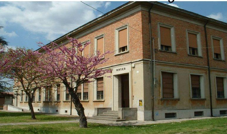 Museo Civico Archeologico Castelnovo Bariano