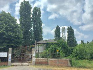 Polesine in estate