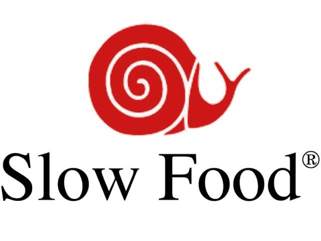 Il logo di Slow Food da cui nasce la condotta Slow Food Giovani Rovigo