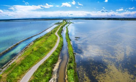 Un magnifico scorcio del Delta del po