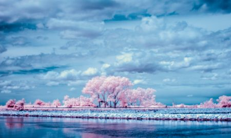 Paesaggio del Delta del Po: foto di Matteo Albertin