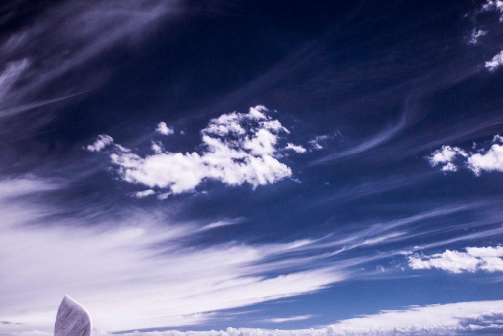 Paesaggio del Delta del Po agli infrarossi: foto di Matteo Albertin