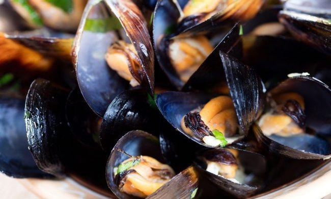 I deliziosi molluschi che si potranno gustare alla Sagra della Cozza