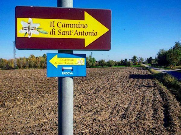 Il cammino di Sant'Antonio, parte del percorso Rovigo, la campagna e l'argine dell'Adige