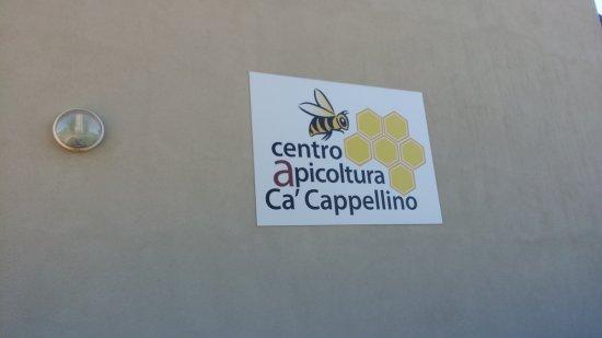 Logo all'ingresso del Museo delle api