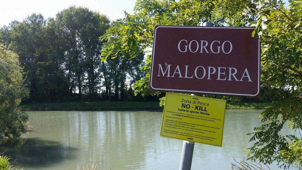 Il Gorgo Malopera all'interno del percorso del Parco vallalta