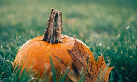 Pumpkin 1030817 960 720