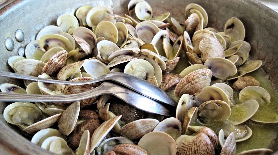 Steamed Clams 603110 960 720