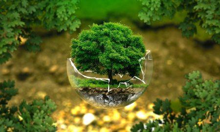 Tutela Ambientale
