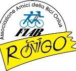 Fiab Rovigo logo