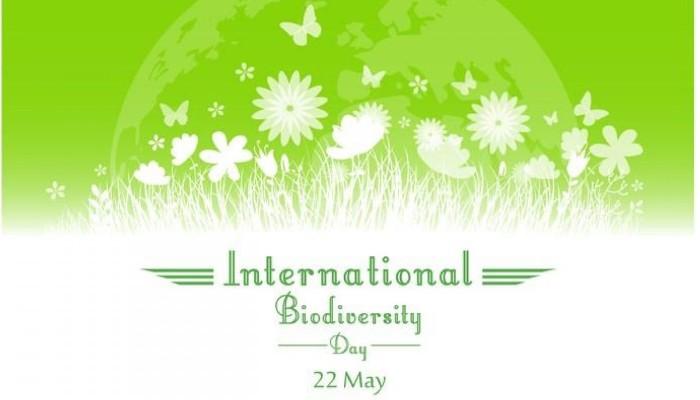 Logo Giornata Mondiale Biodiversita