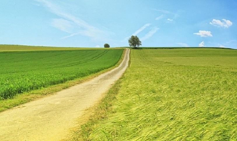 il cammino