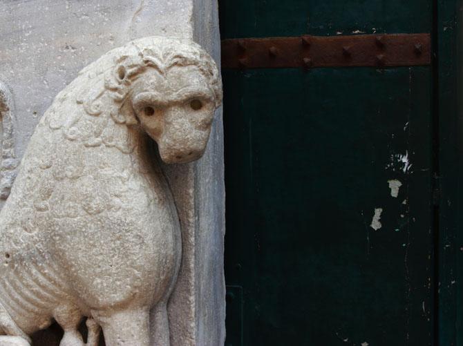 Leone del Duomo