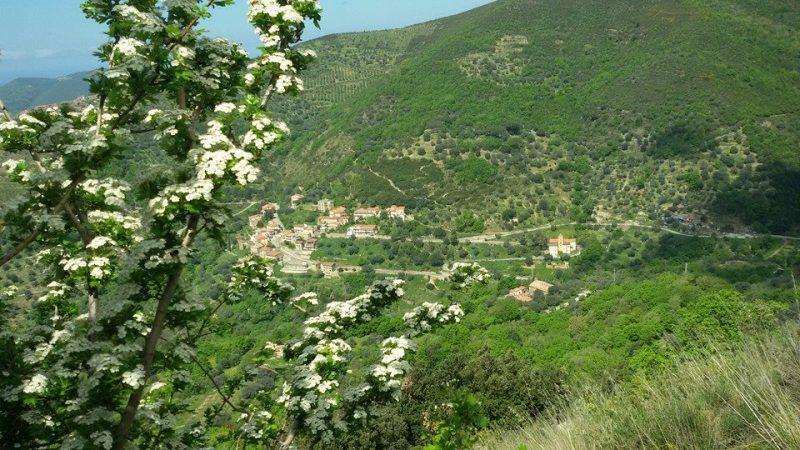 Capograssi (Serramezzana)
