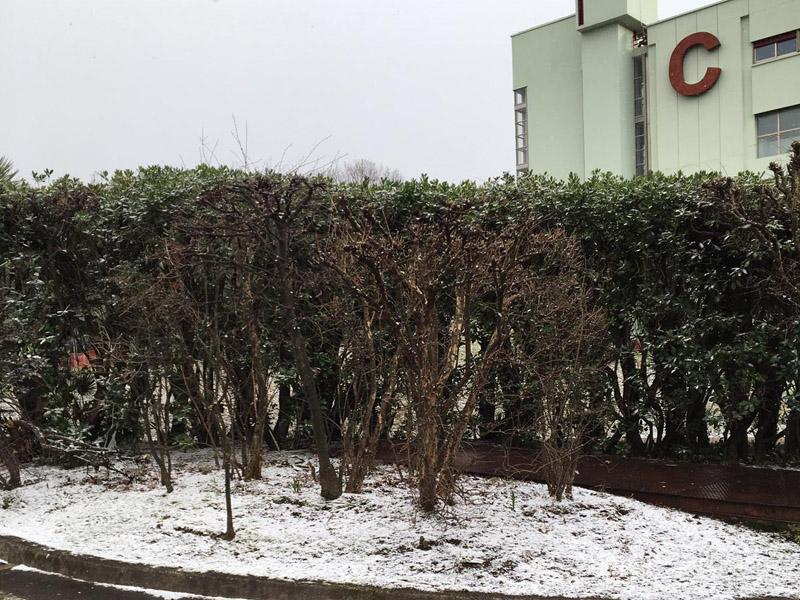 Neve - Fisciano innevata