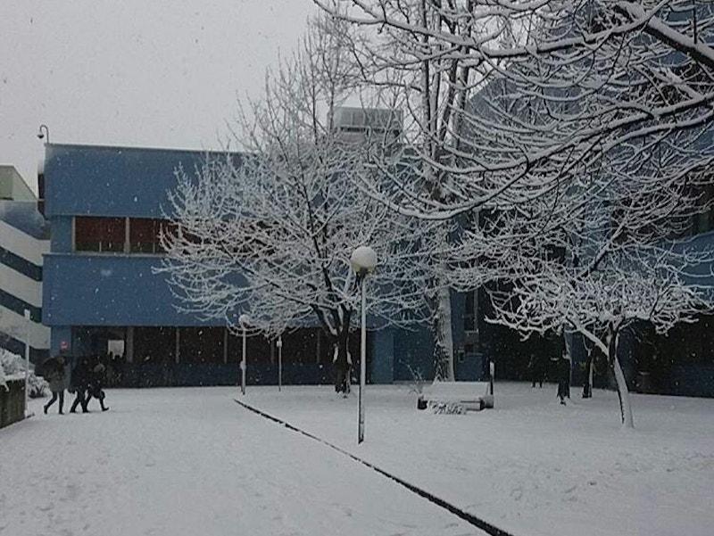 UNISAOrienta - L'università coperta di neve durante il periodo natalizio