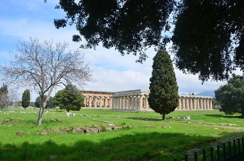 Sirenae Essenze - Una vista dei templi di Paestum
